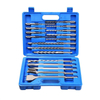 Combination Set of 17 Piece SDS Plus Masonry Drill Bits and Chisels in a Plastic Carry Case